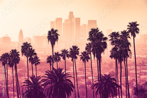 Fototapeta Los Angeles skyline with palm trees in the foreground