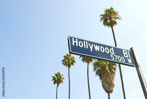 Photo  Hollywood Boulevard sign with palm trees in the background