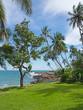 Green garden lawn and rocky beach in December in Sri Lanka, Asia.