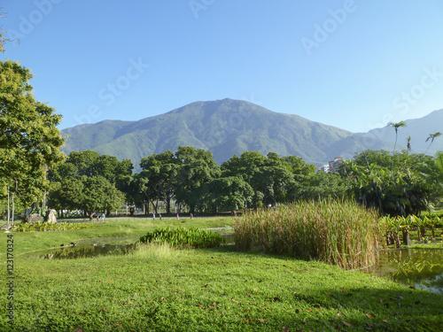 Fotografie, Obraz  Paisaje natural con montaña de fondo.