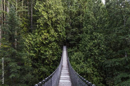 Fotografía  Suspension bridge in the forest