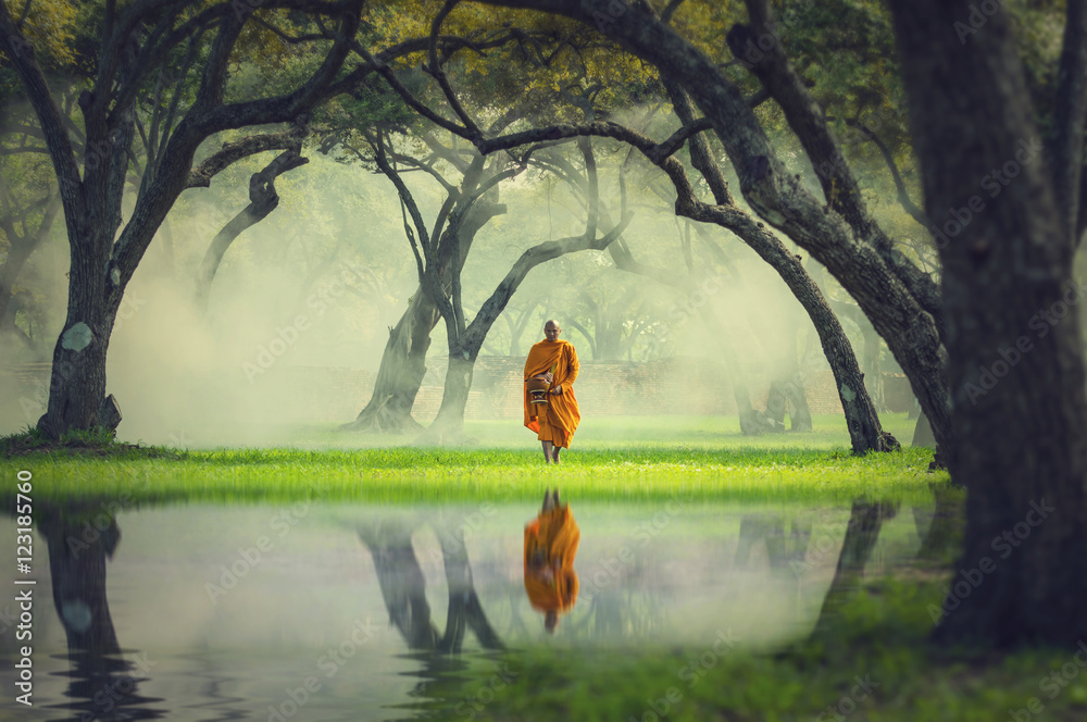 Fototapeta Monk hike in deep forest reflection with lake, Buddha Religion c