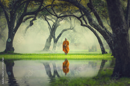 Tableau sur Toile Monk hike in deep forest reflection with lake, Buddha Religion c