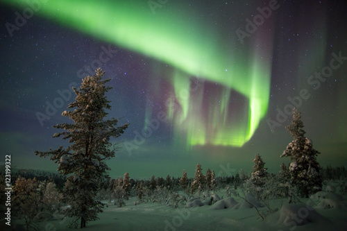 Northern Lights in Lapland, Finland. Poster