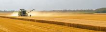 Harvester Combine Harvesting W...