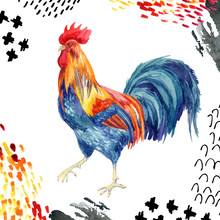 Watercolor Rooster Isolated On White Background.