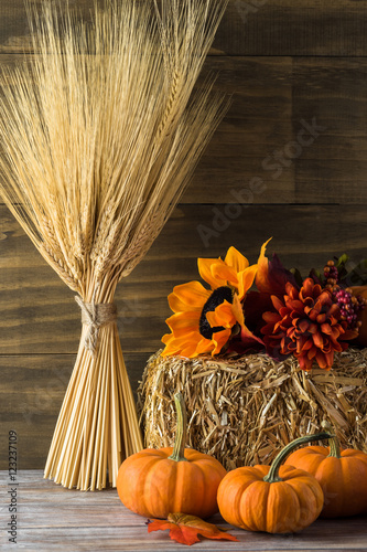 Autumn home decor. Poster