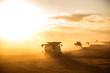 Leinwanddruck Bild - Harvesting the wheat