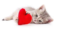 Kitten With Red Heart.