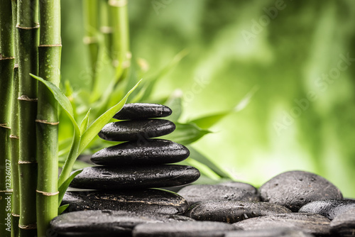 Recess Fitting Zen still life with zen basalt stones and bamboo sprout