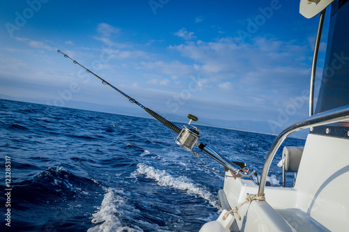 Poster Peche The fishing-rod equipped with the coil
