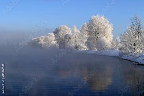Cadres-photo bureau Bleu vert winter tale