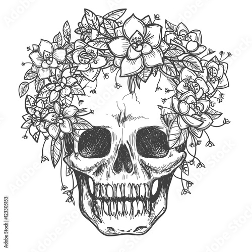Printed kitchen splashbacks Vector drawing dead skull with rose flowers sketch isolated on white background