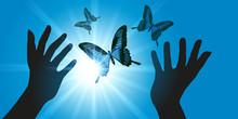 Lâché De Papillons - Liberté