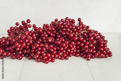 Fotografía  Viburnum berries on white wooden background