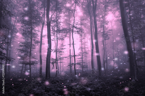 Artistic purple color foggy forest tree fairytale landscape with abstract fireflies.