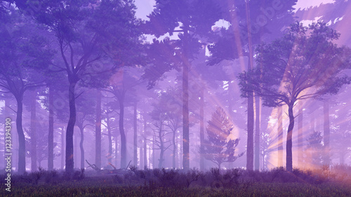 Dreamlike woodland scenery. Misty pine forest with sun light rays and fog at sunset. 3D illustration.