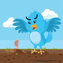 Blue Bird Hunting Worm
