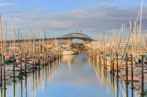 Boats mooring with Auckland harbor bridge background in Auckland