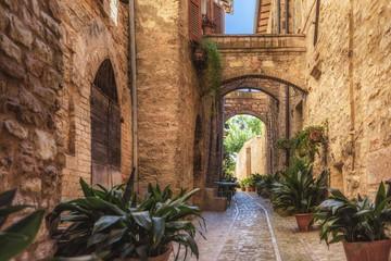 Fototapeta uliczka w Umbrii