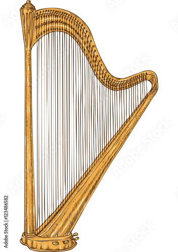 Fotografie, Tablou Isolated Golden Harp