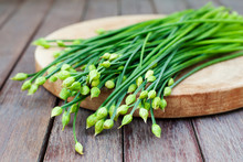 Chives Flower, Garlic Chives Or Chinese Chive.