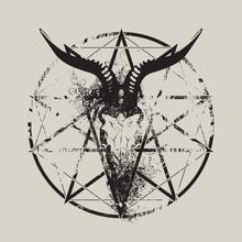 Vector Illustration With Skull...