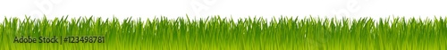 Obraz green realistic vector grass meadow isolated on white background - fototapety do salonu