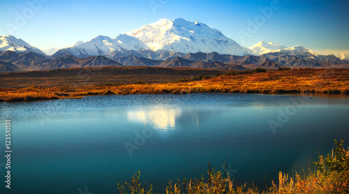 Photo Stands Blue sky Denali Sunshine