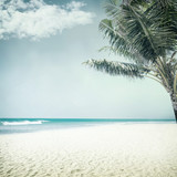 tropical background - 123516994