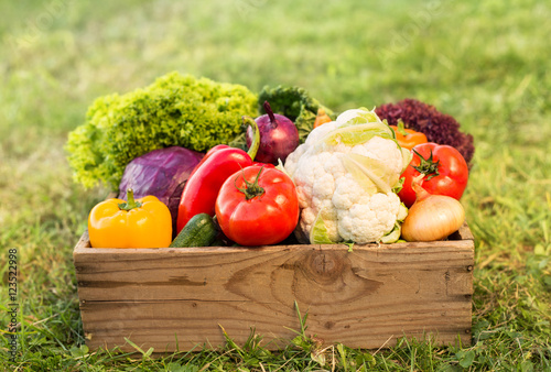 Photo  fresh organic vegetables