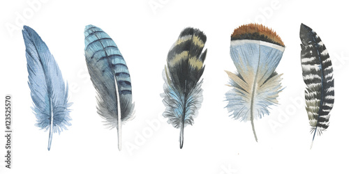 Watercolor bird feather from wing isolated Canvas-taulu