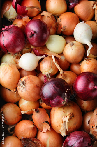 mix of onions top view