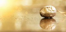 Banner Of Golden Christmas Nut Decoration With Copy Space