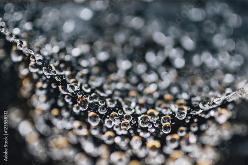 Close up of water drops on surface