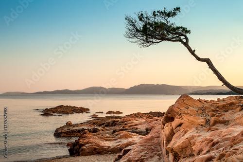 Plakat Plaża Palombaggia, Korsyka, zachód słońca