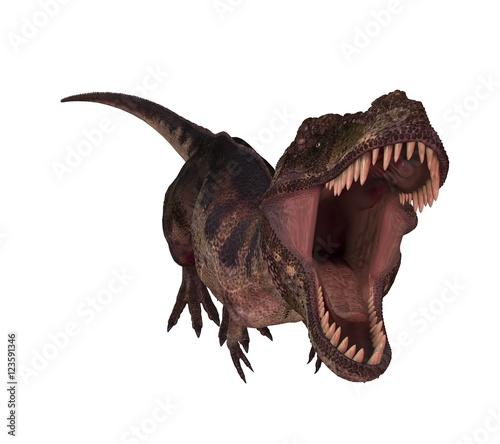 Obraz na plátně  tyrannosaur