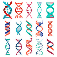 DNA Molecule Sign Set, Genetic Elements And Icons Collection Strand. Vector