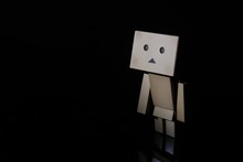 Toy Danbo Of The Shadow