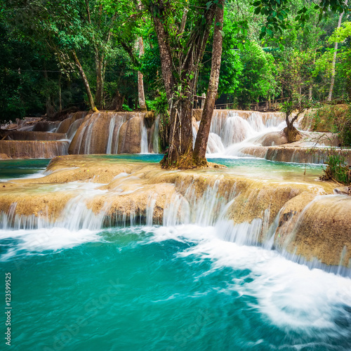 Cadres-photo bureau Campagne Jangle landscape with amazing turquoise water of Kuang Si cascade waterfall at deep tropical rain forest. Luang Prabang, Laos travel landscape and destinations