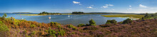 Panorama Of Islands In Poole Harbour With Heather Foreground