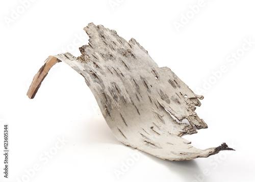 Fotografie, Obraz  Bark of birch