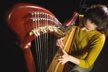 Woman Playing A Harp In Music School