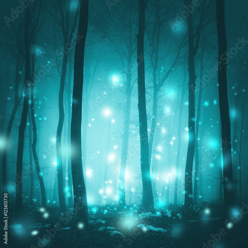 Juliste  Magical foggy forest trees with artistic fireflies light background