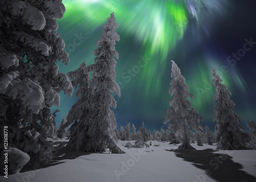 Poster Aurore polaire Winter night landscape with forest and polar northern lights