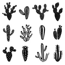 Cactus Silhouette Illustration Set
