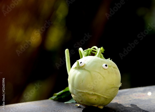 Photo  bad hair day, cabbage with sugar eyes looking depressive