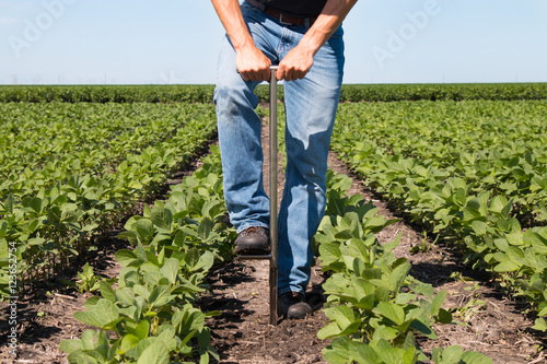 Photo  Agronomist Using a Tablet in an Agricultural Field