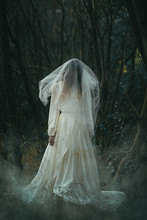 Creepy Lone Bride In Misty Woods