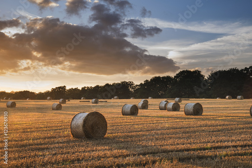 Foto auf Gartenposter Landschappen Beautiful countryside landscape image of hay bales in Summer fie